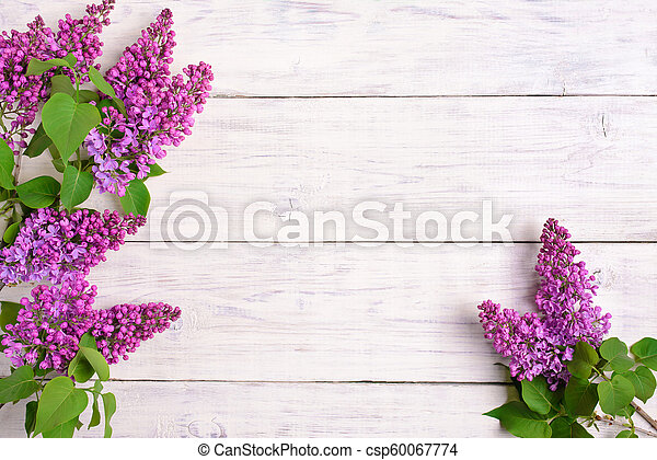 The beautiful lilac on a wooden background - csp60067774