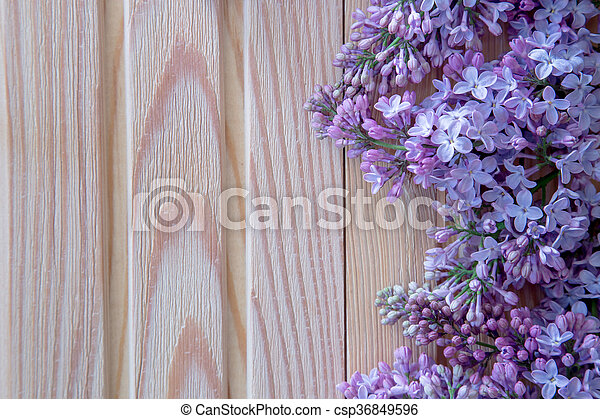 The beautiful lilac on a wooden background - csp36849596