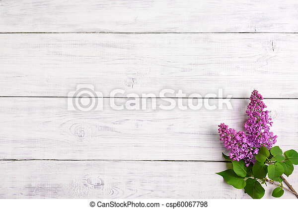 The beautiful lilac on a wooden background - csp60067798