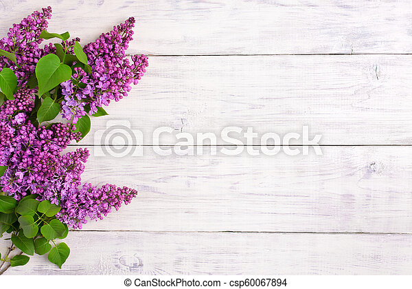 The beautiful lilac on a wooden background - csp60067894