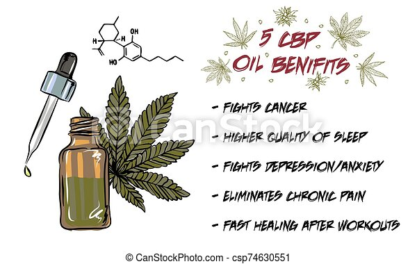 The benefits of CBD oil, medical uses for CBD oil, cannabis indica health benefits infographics - csp74630551
