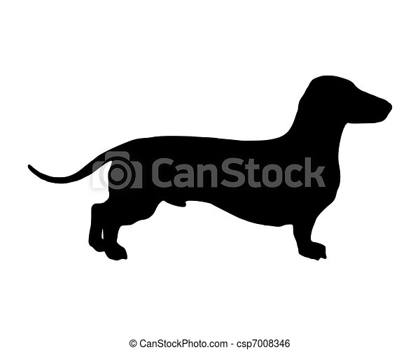 The black silhouette of a shortlegged Badger Dog - csp7008346