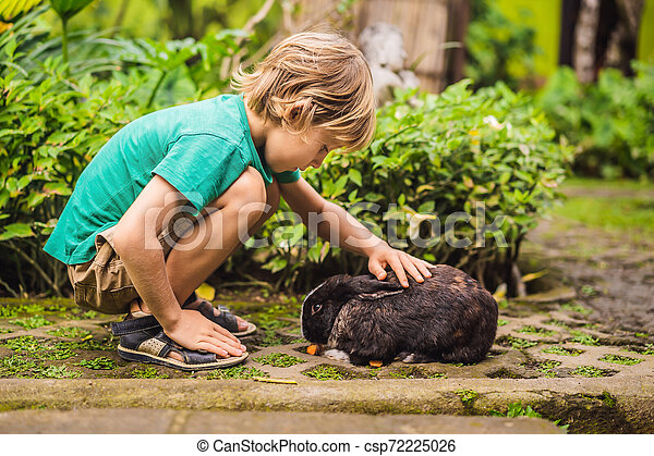 The boy feeds the rabbit. Cosmetics test on rabbit animal. Cruelty free and stop animal abuse concept - csp72225026