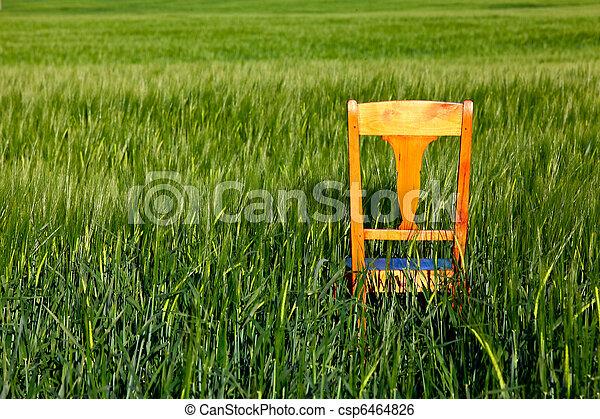 The chair - csp6464826
