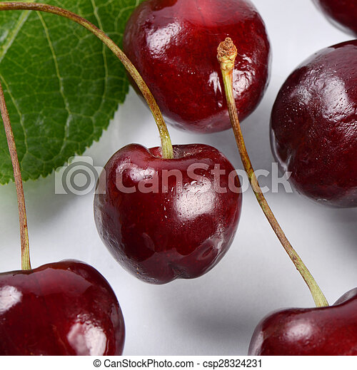 The cherry on branch with leaves - csp28324231