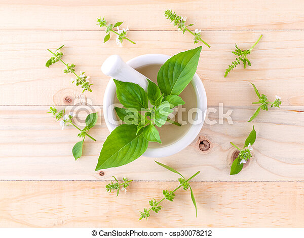 The circle of lemon basil( hairy  basil ) leaf and flower on wooden background. - csp30078212