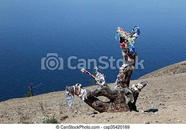 The coast at Lake Baikal, Olkhon island, , Russia - csp35420169