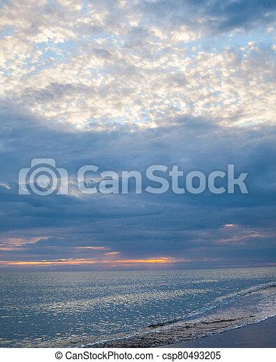 The coast of the Black Sea - csp80493205