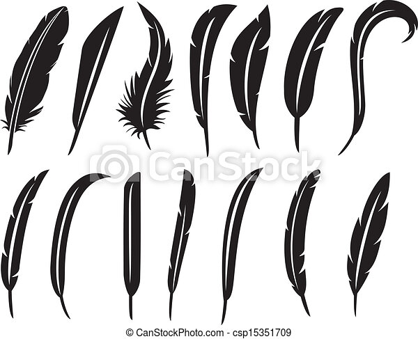 the collection of feathers - csp15351709