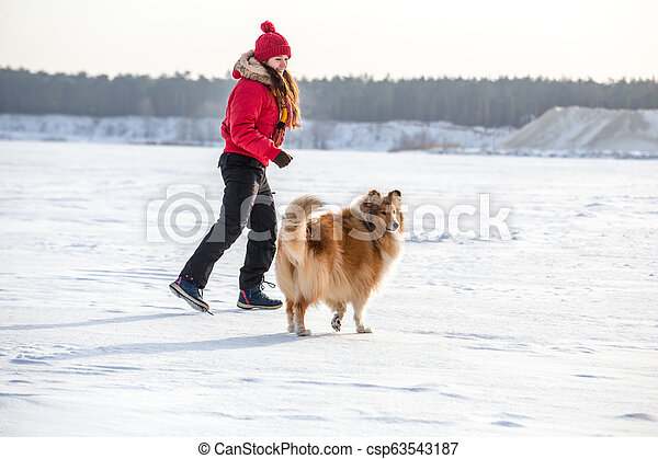 The Collie dog running with girl at winter landscape - csp63543187