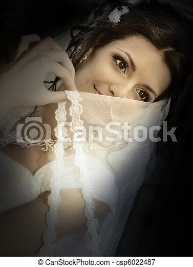 The coquettish bride - csp6022487