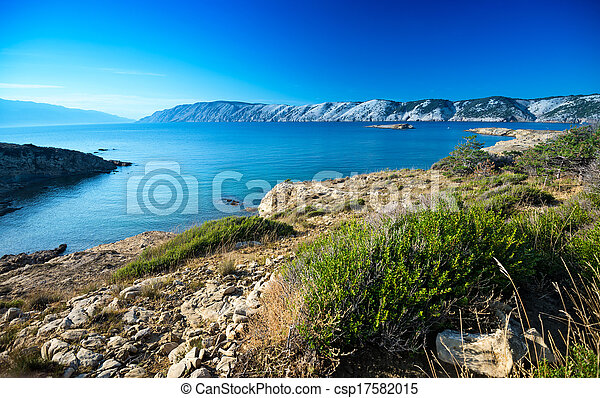 The Croatian coast - csp17582015