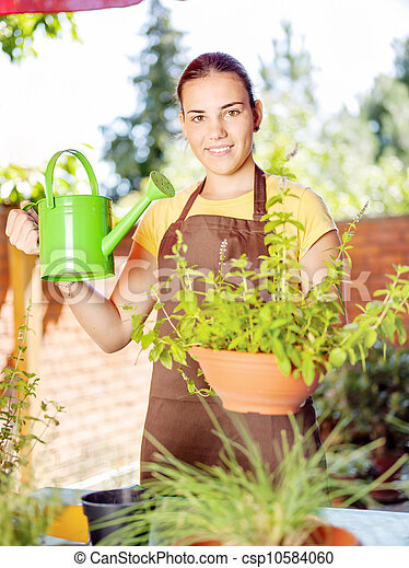 the cultivation of plants in pots - csp10584060