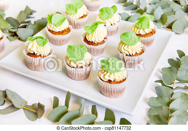 The cupcakes on a plate - csp81147732
