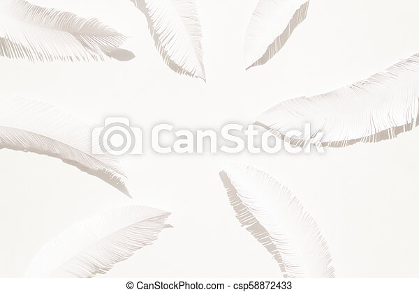 the feathers of a bird made of white paper on white background - csp58872433