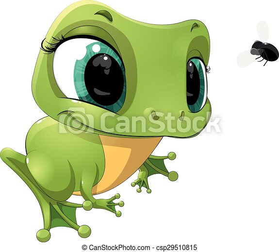 the frog - csp29510815