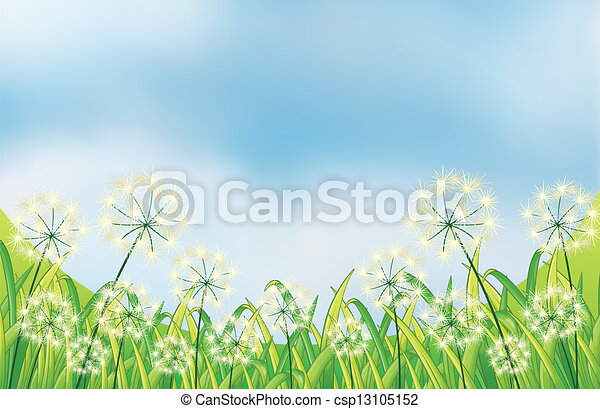 The growing weeds under the blue sky - csp13105152