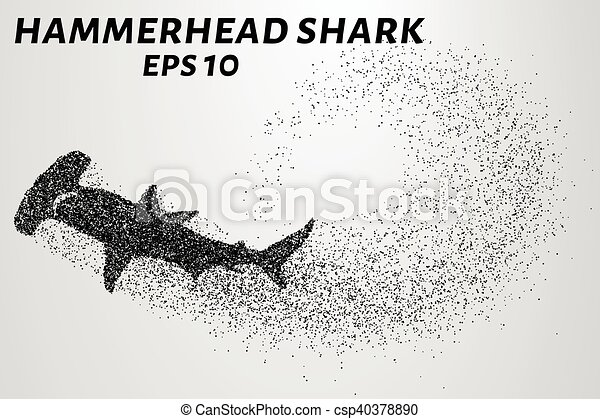 The hammerhead shark from the particles. Fish hammer consists of small circles. Vector illustration - csp40378890