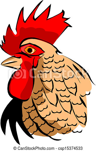 The head of the Rooster - csp15374533