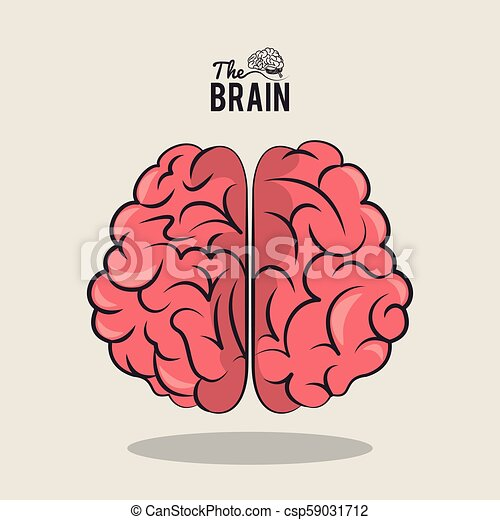 The Human Brain Cartoon Vector Illustration Graphic Design Canstock