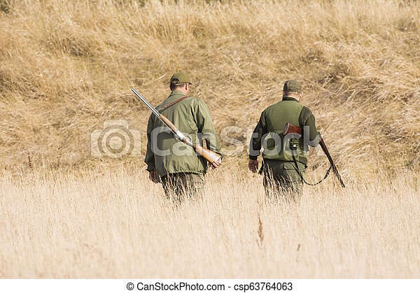 The hunter in the hunting clothes and with rifle hunts - csp63764063