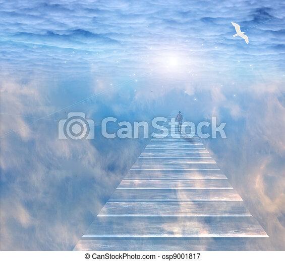 The journey - csp9001817