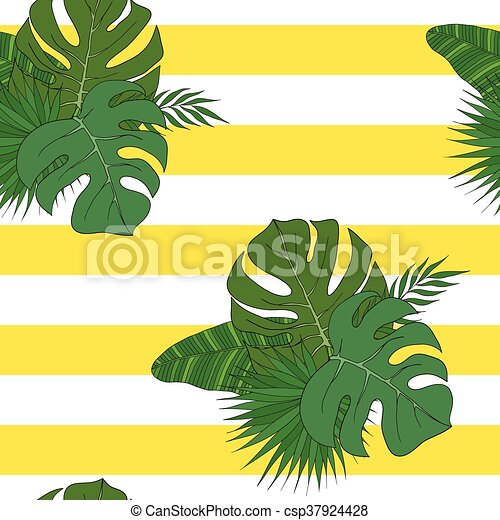 The leaves of the tropical palm trees. Pattern. - csp37924428