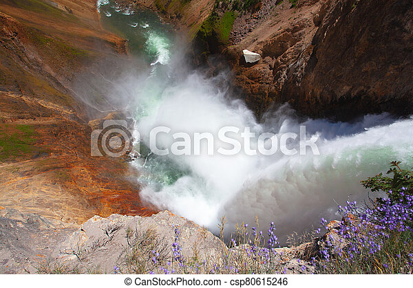 The Lower Falls in Yellowstone National Park - csp80615246