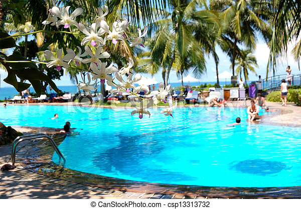 The luxury hotel with swimming pool and orchid's flowers (in focus), Bentota, Sri Lanka - csp13313732