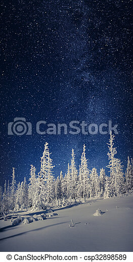 The Milky Way over the fir trees in the winter mountain forest. - csp32898589