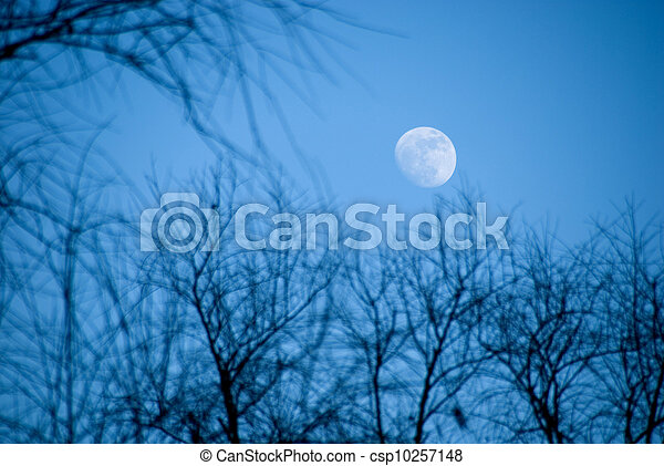 The moon in the evening sky - csp10257148