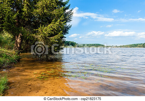 The morning landscape with fir over lake  - csp21823175