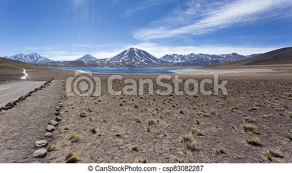 The natural park at Miscanti lagoon - csp83082287