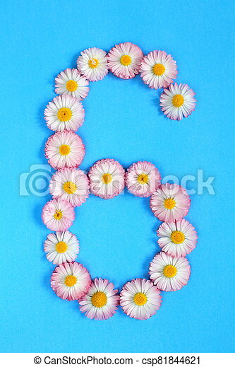 The number 6 is written in white pink flowers on a blue background. - csp81844621