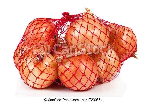 the onions - csp17230584