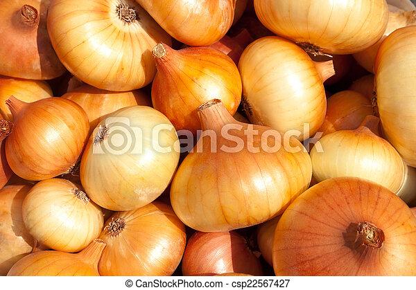The Onions - csp22567427
