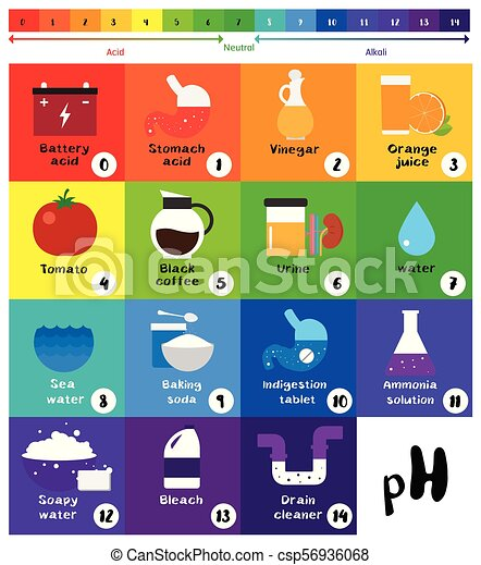 The Ph Scale Universal Indicator Ph Color Chart Diagram Acidic