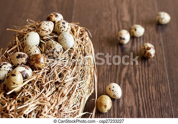 The picture quail eggs - csp27233227