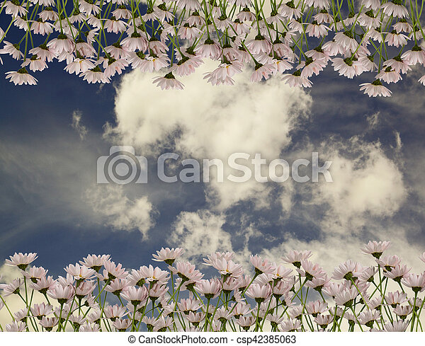 The picturesque bouquet of daisies on a background of blue sky with clouds - csp42385063
