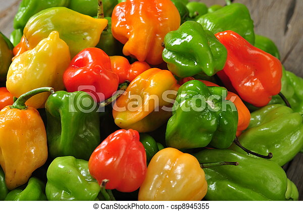 the real hot chilli peppers from mexico - csp8945355