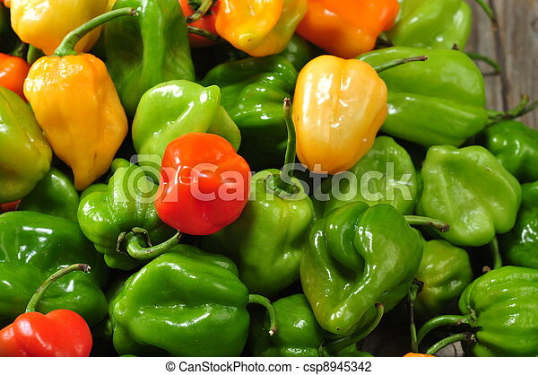 the real hot chilli peppers from mexico - csp8945342