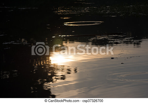 The reflection of the sun - csp37326700