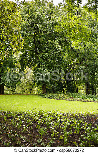 The Royal Palace park in Oslo - csp56670272