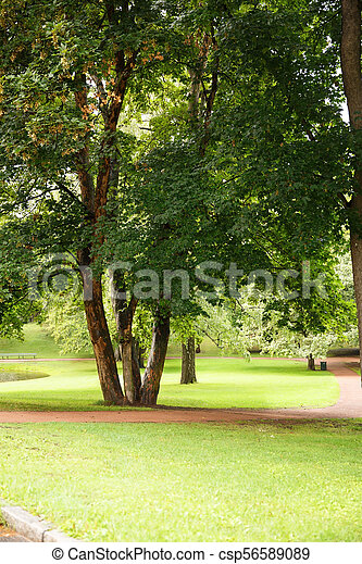The Royal Palace park in Oslo - csp56589089