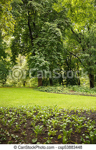 The Royal Palace park in Oslo - csp53883448