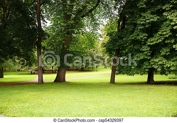 The Royal Palace park in Oslo - csp54329397