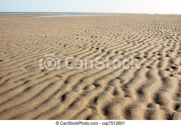 the seabed at low tide - csp7512601