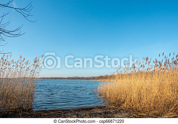the shore of a lake at dusk - csp66871220