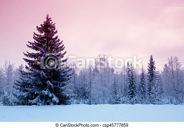 The short winter day in northern Russia. Karelia - csp45777859