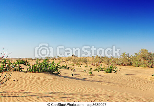 The spring in the desert - csp3639097